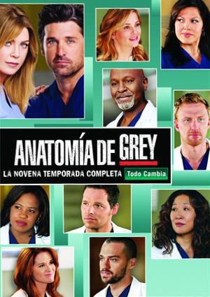 Cartel Temporada 9 de 'Anatomía de Grey'
