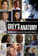 Cartel Temporada 11 de 'Anatomía de Grey'