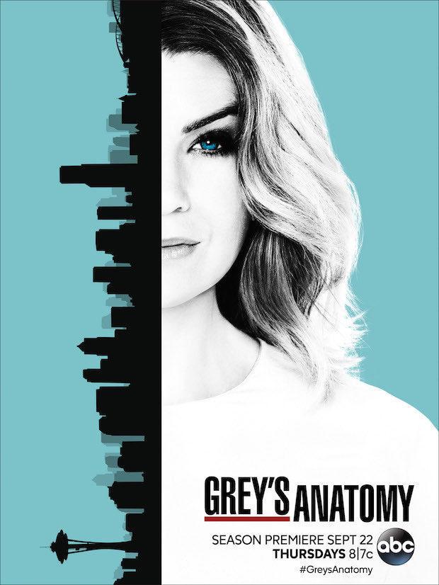 Cartel Temporada 13 de 'Anatomía de Grey'