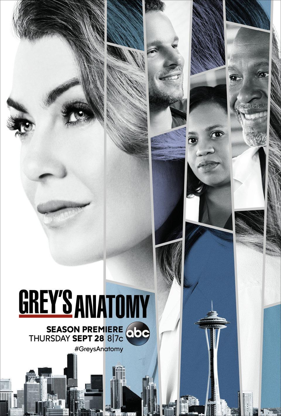 Cartel Temporada 14 de 'Anatomía de Grey'
