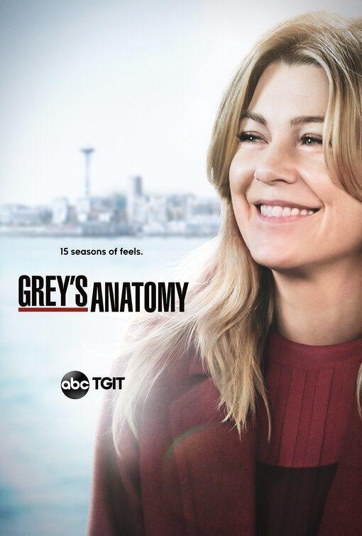 Cartel Temporada 15 de 'Anatomía de Grey'