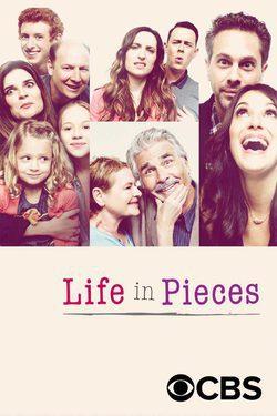 La vida en piezas