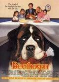 Beethoven - Uno más de la familia