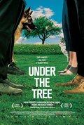 Bajo el mismo árbol