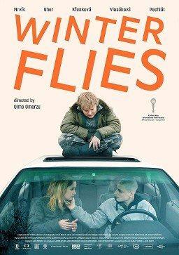 Cartel Winter flies de 'Winter Flies'