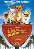 Cartel Un Chihuahua en Beverly Hills