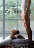 Cartel Canino