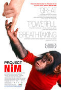 Cartel Proyecto Nim