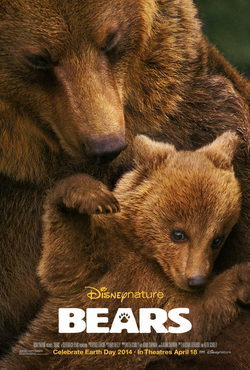 Cartel de Bears