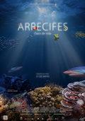 Arrecifes: Oasis de vida