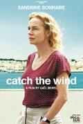 Catch the Wind