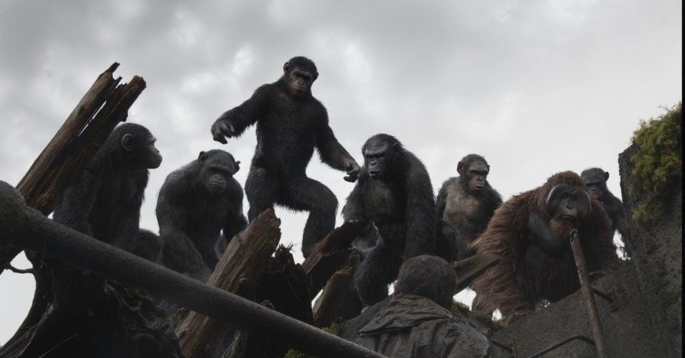 El amanecer del planeta de los simios | El fotograma