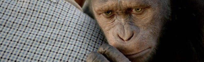 Caesar en 'El origen del planeta de los simios'