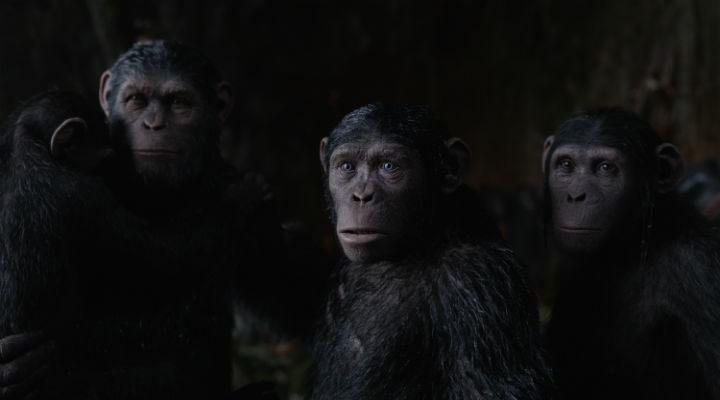 La familia de César