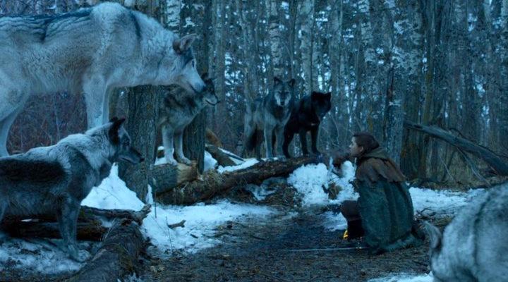 Arya se reencuentra con Nymeria