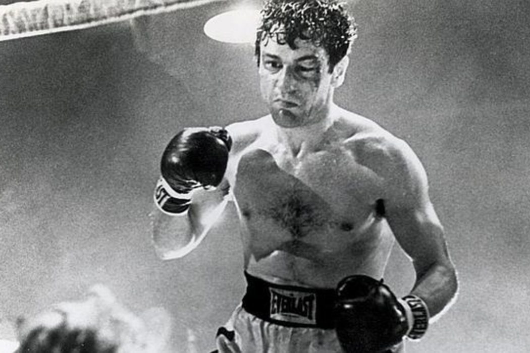Boxeador salvaje