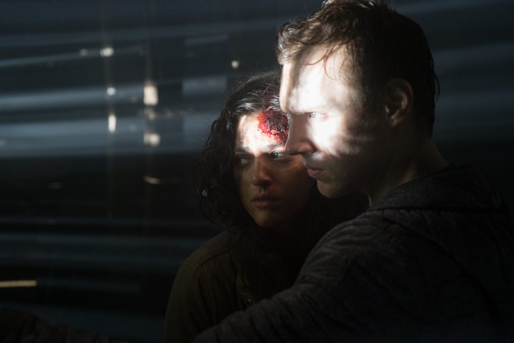 Imagen 4 de 5 del set