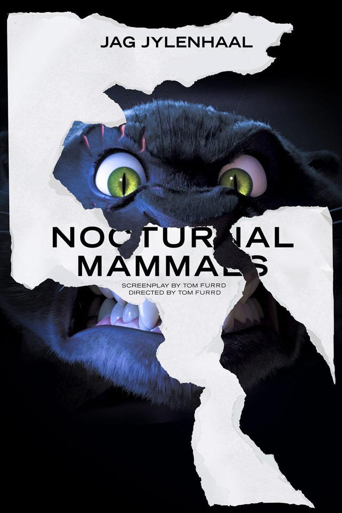 'Mamíferos nocturnos' ('Nocturnal Mammals')