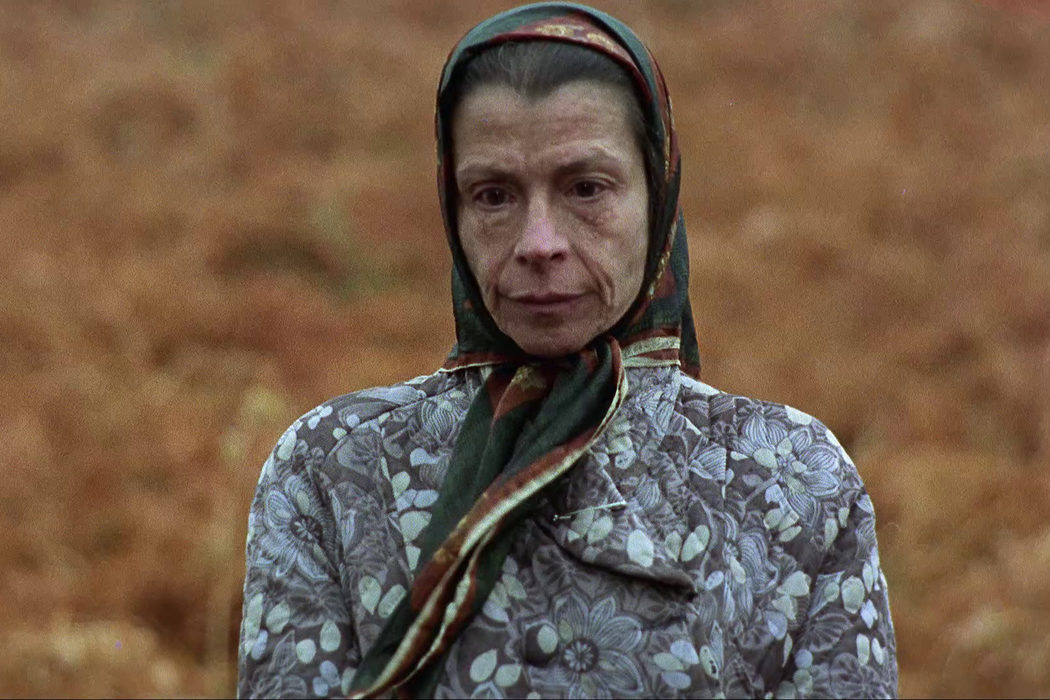 'Furtivos' (1975)