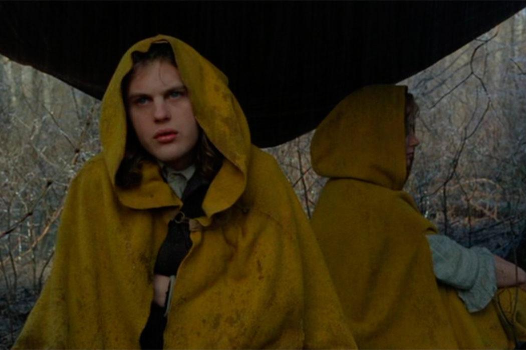 'El bosque' (2004)