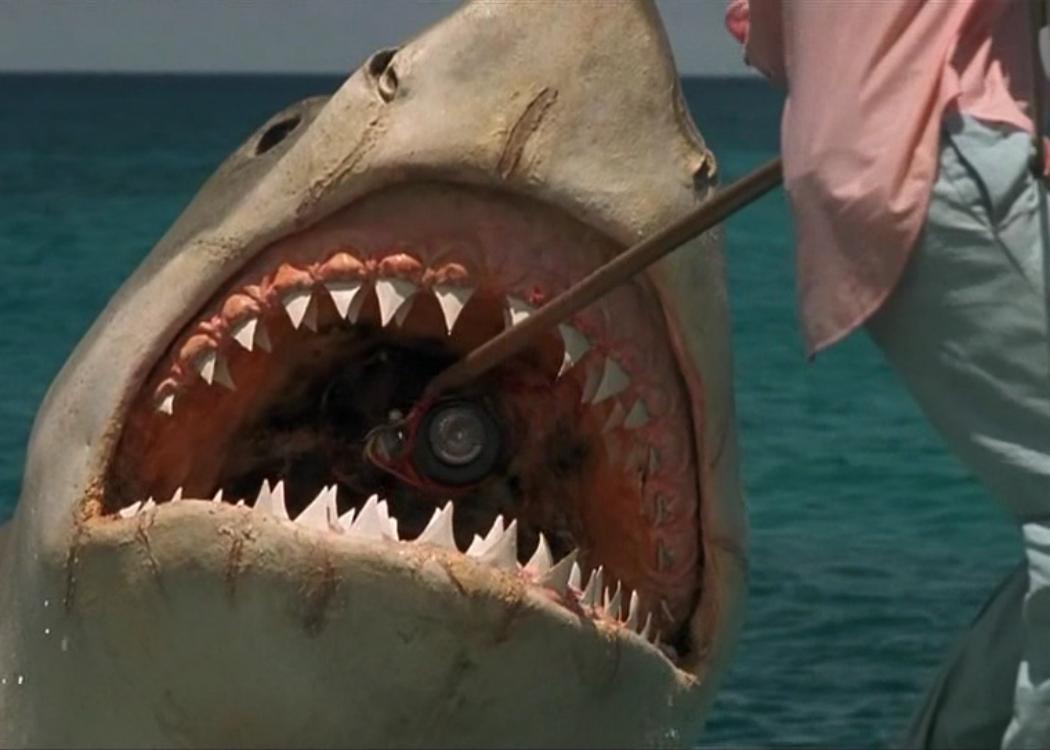 'Tiburón' (1975): Fobia a bañarse en alta mar