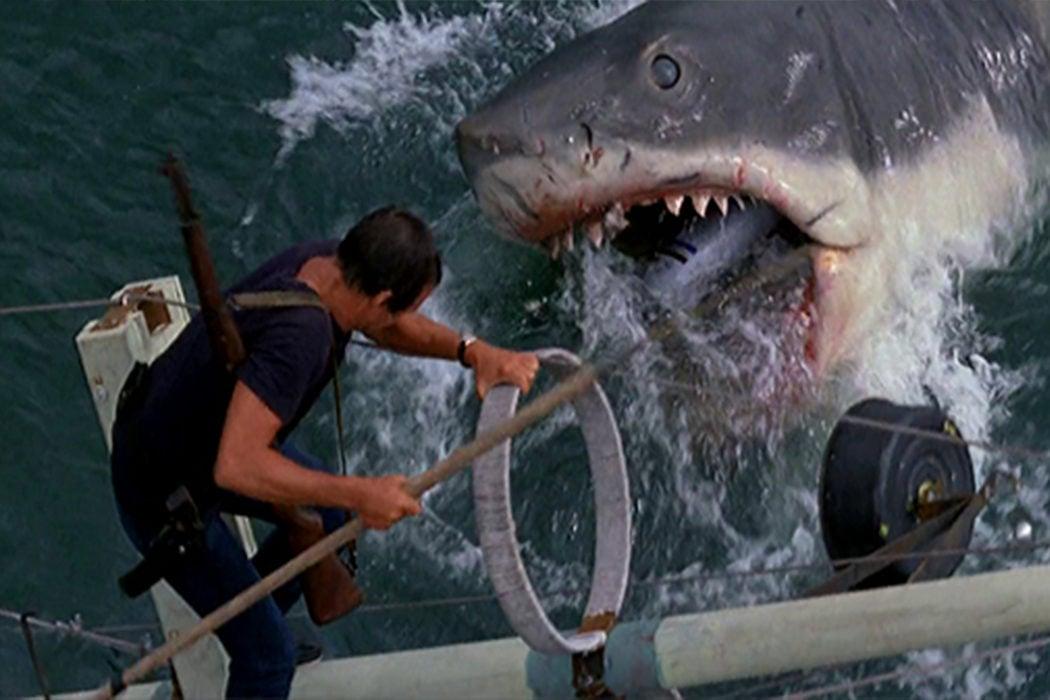'Tiburón' y Peter Benchley