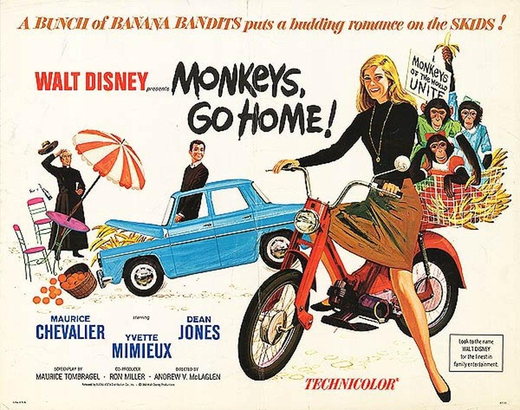 'La invasión de los monos'