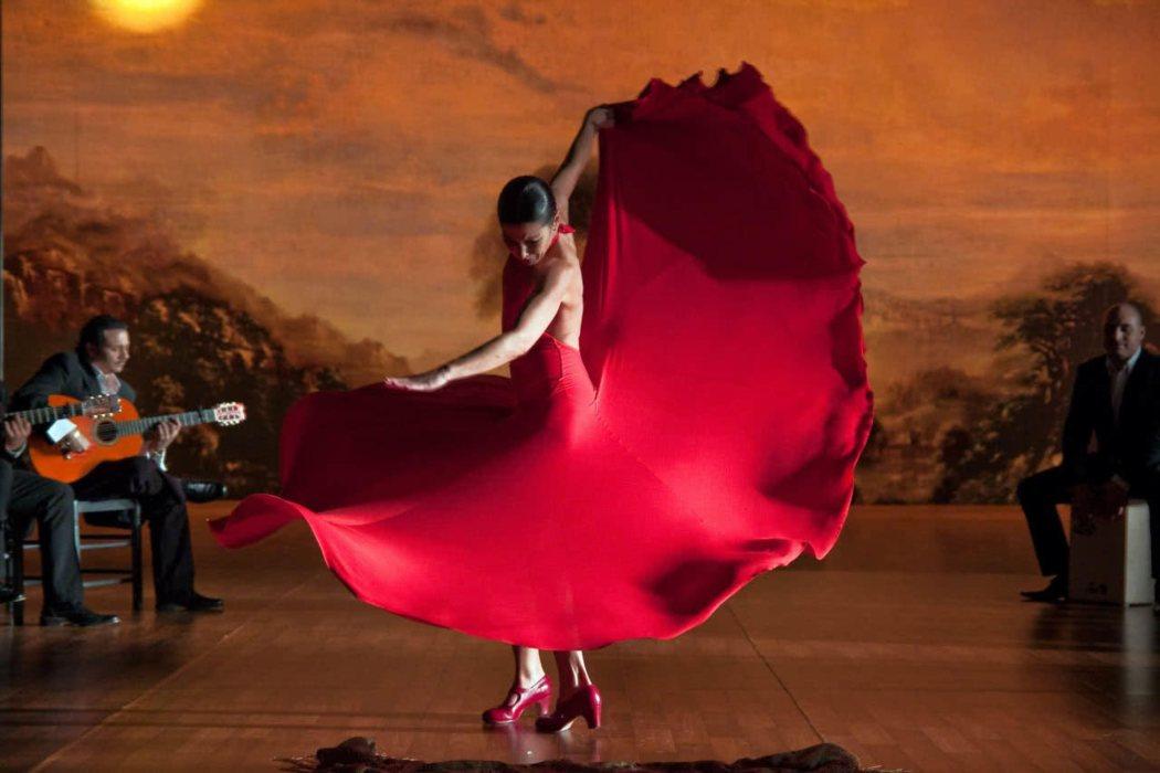 'Flamenco, flamenco' (2010)