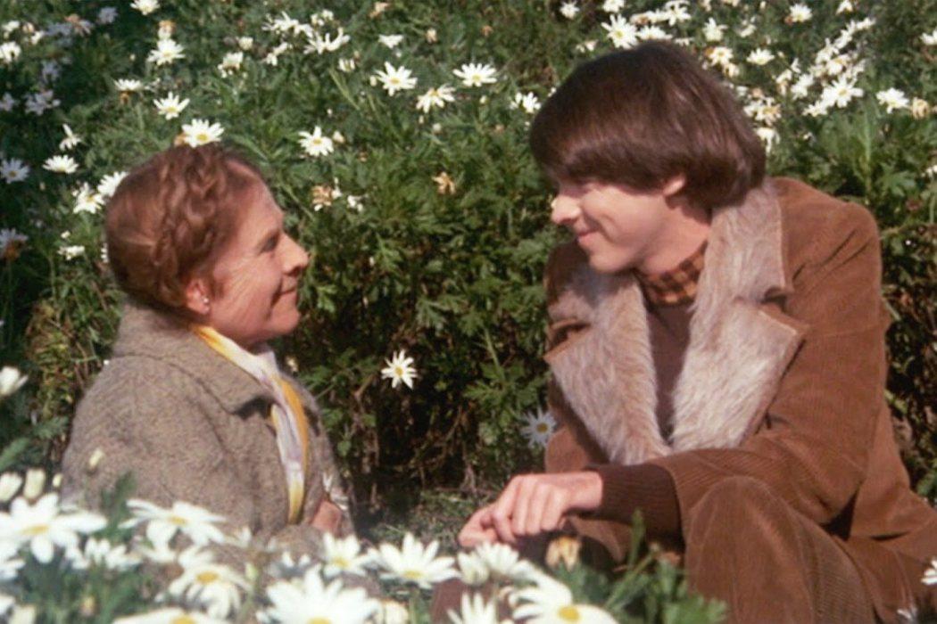 'Harold y Maude'
