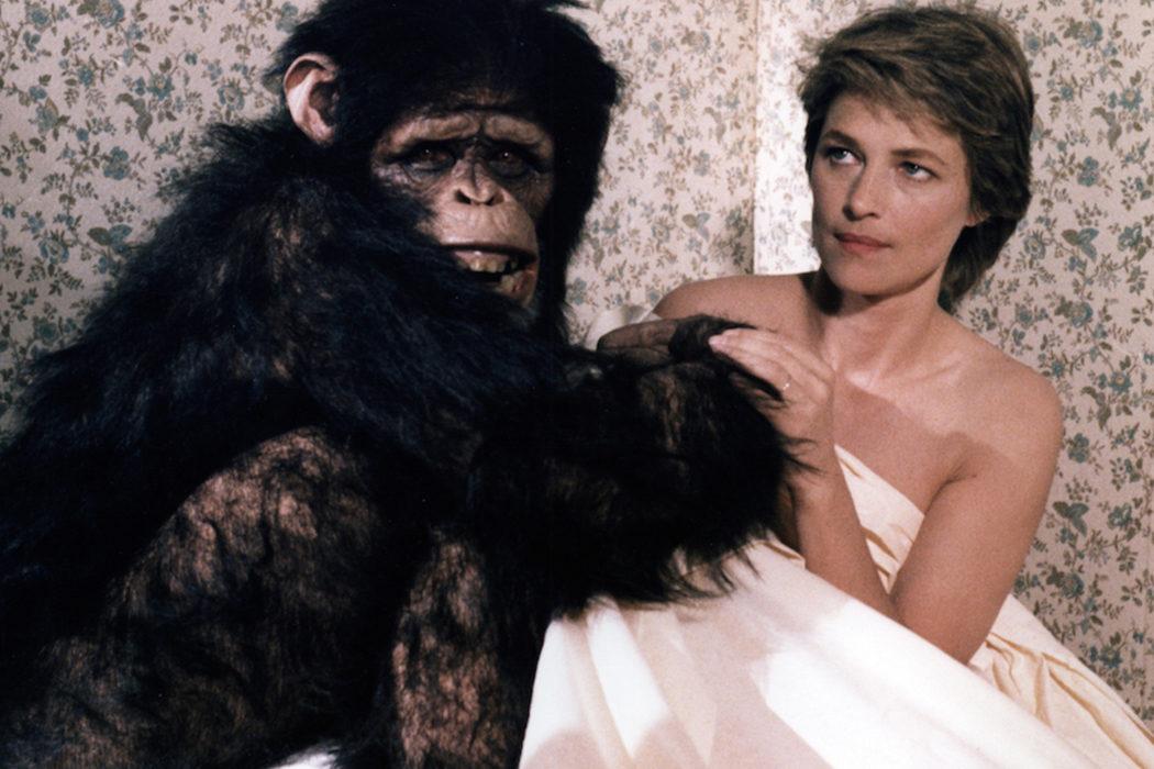 Su idilio con un chimpancé