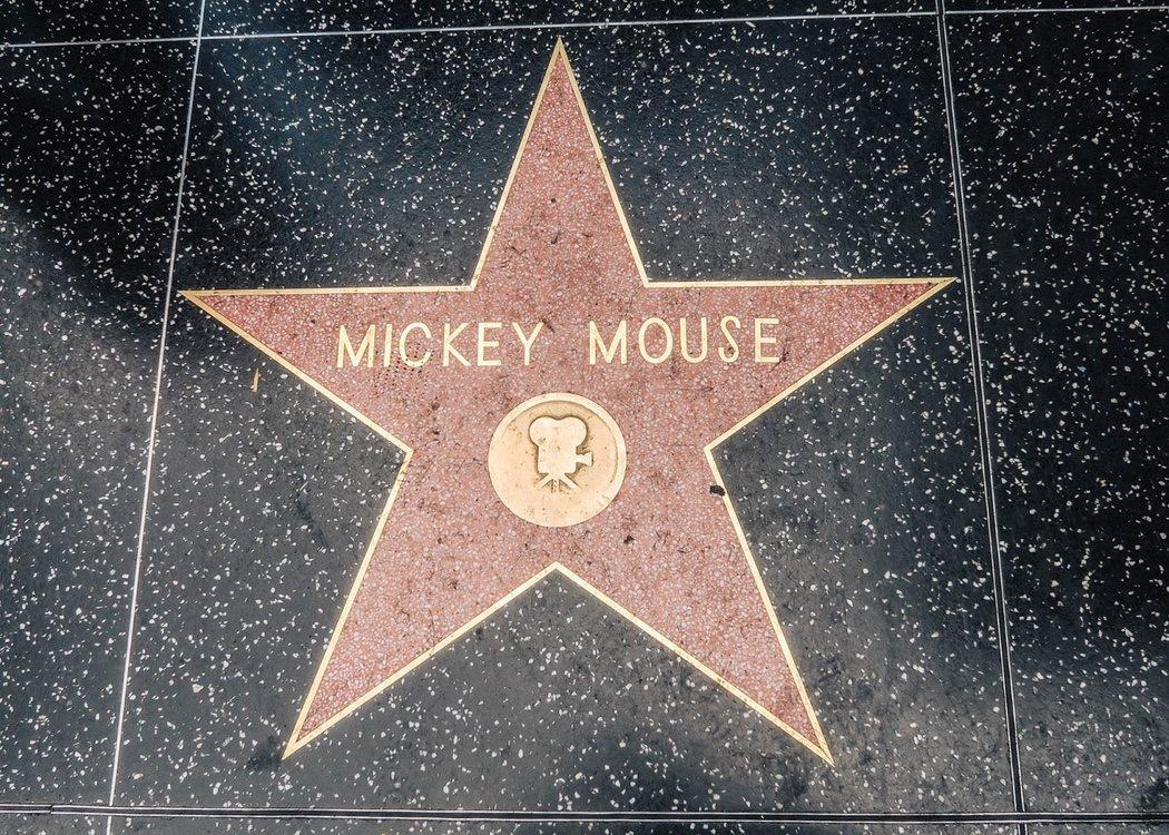 Tiene una estrella de en el paseo de la fama