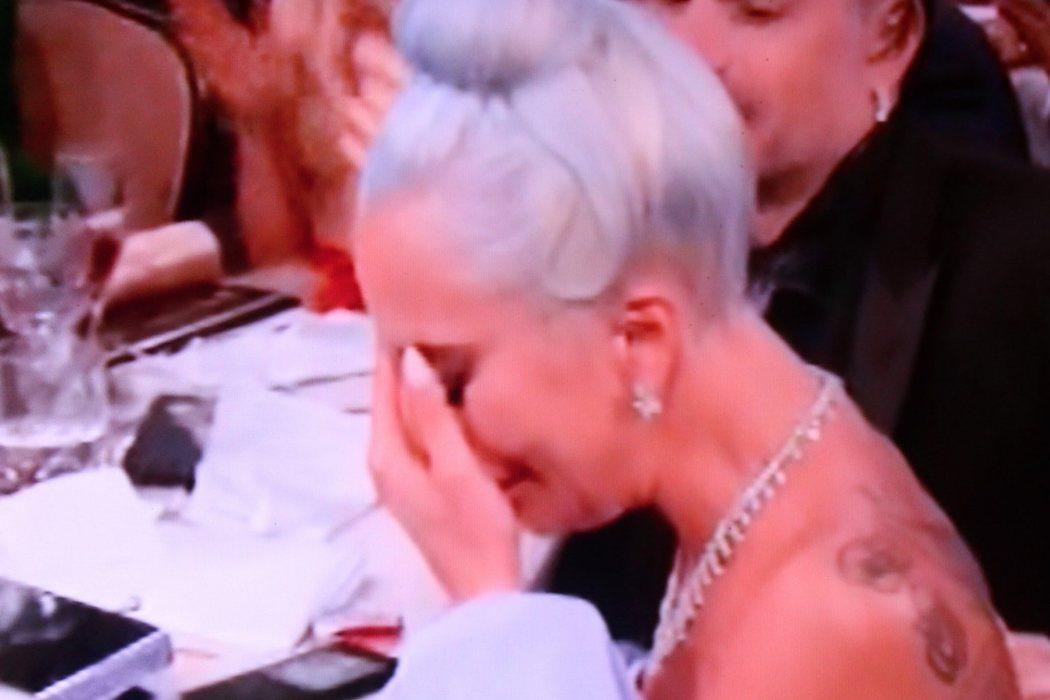 Todo Lady Gaga