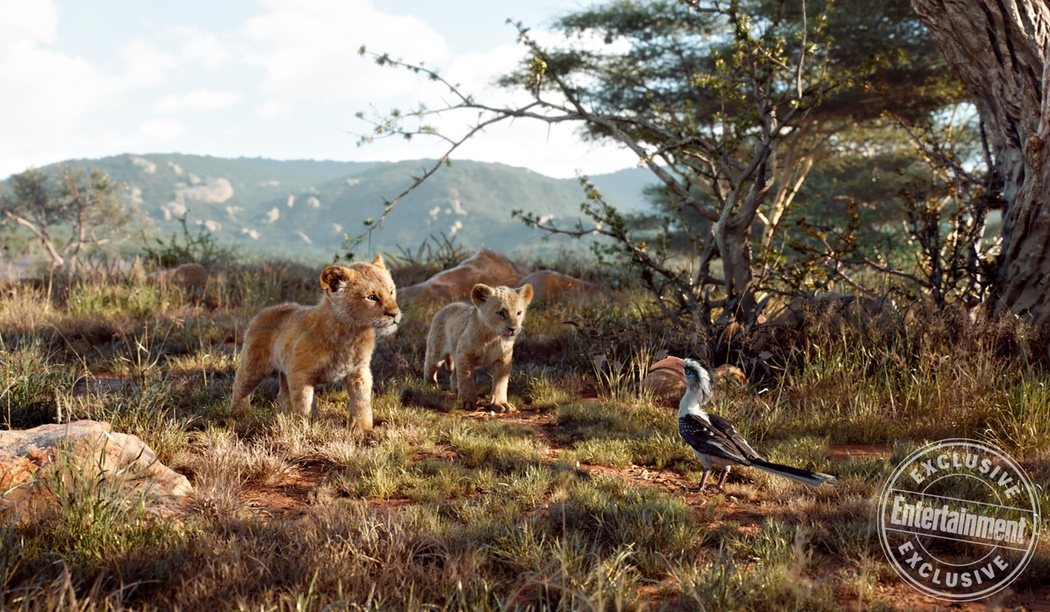 Simba, Nala y Zazú