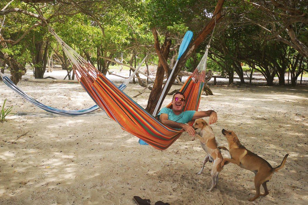 Un guion viajero y canino