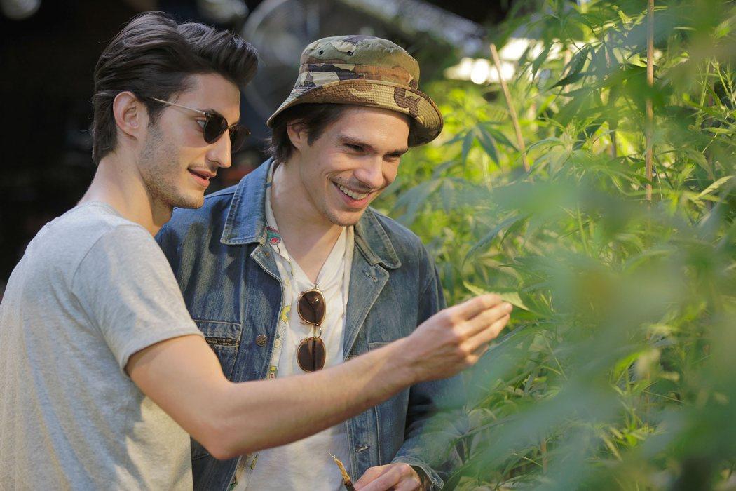 'Five', su impulso entre el público francés