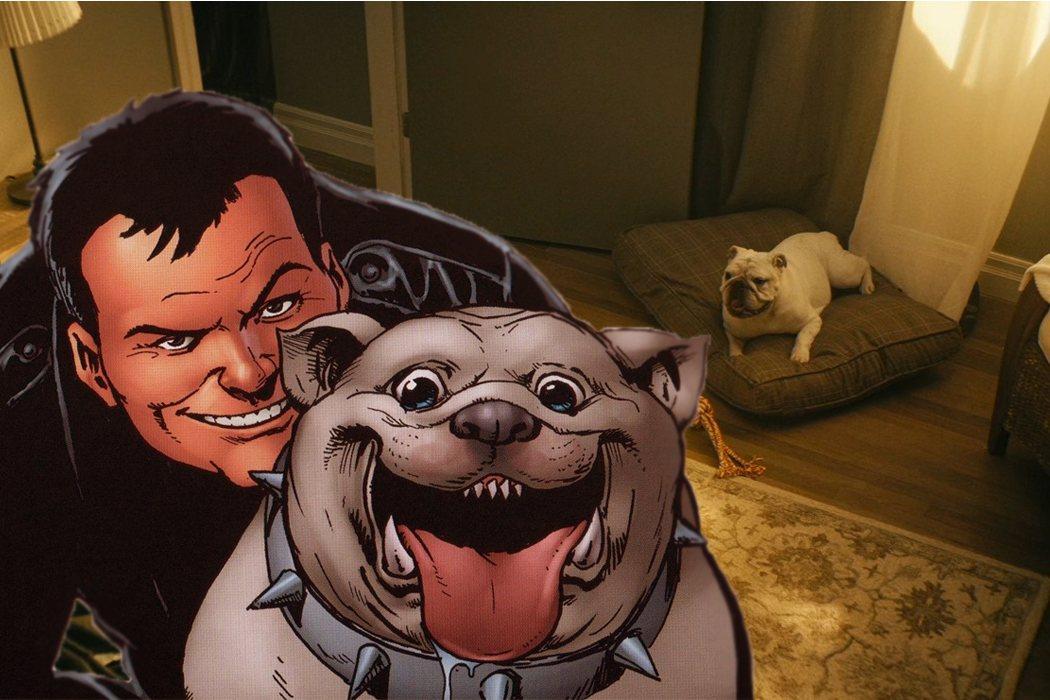 Terror, el inseparable amigo canino de Carnicero