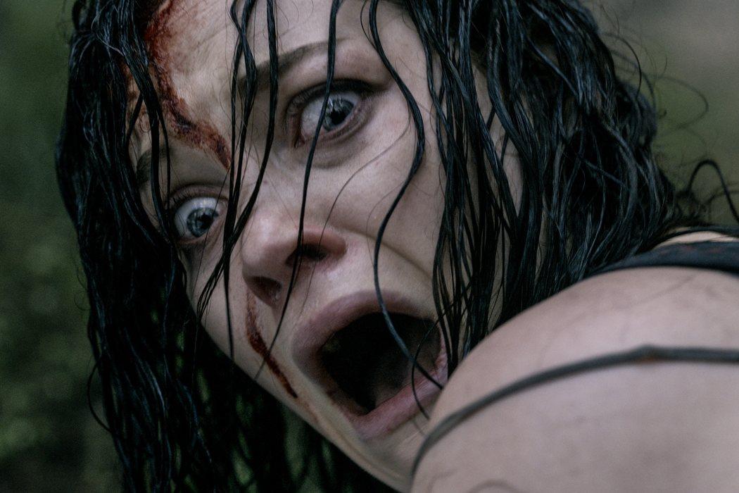 'Posesión infernal (Evil Dead)' (2013)