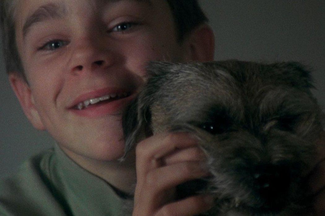 'Mi vida como un perro'
