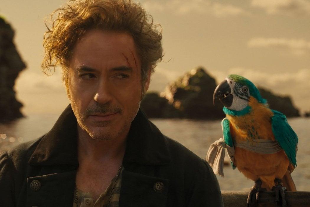 Robert Downey Jr. - Dr. John Dolittle
