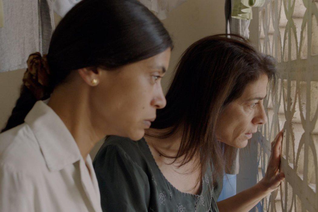 'Alma mater' (2017)