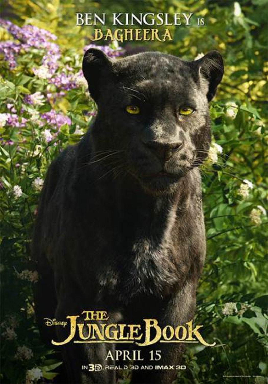 Bagheera 'The Jungle Book' Poster