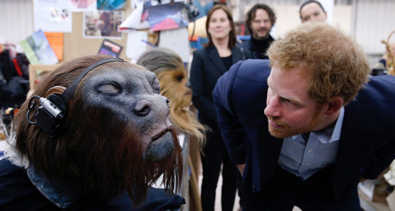 El príncipe Harry ve los detalles de la cabeza de Chewbacca