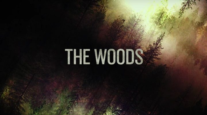 'The Woods'