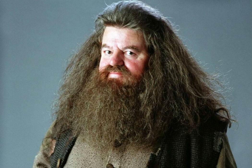 Hagrid ('Harry Potter')