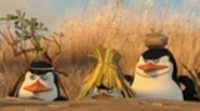 Trailer Madagascar 2 #4